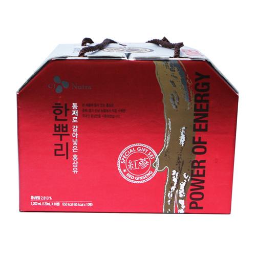 CJ 홍삼 한뿌리(120ml*10입)