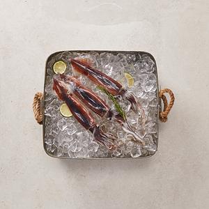 생물 오징어(3마리)
