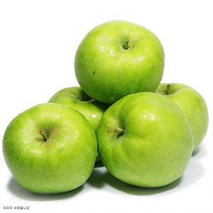 아오리 사과(10입내/box)