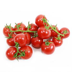 송이 토마토(750g/팩)