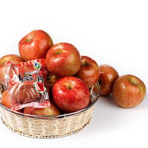 얼음골 사과(4입/봉)