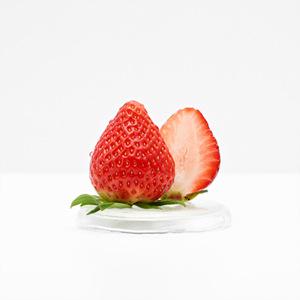 설향 딸기(500g/팩)