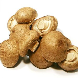 표고버섯(150g/봉)
