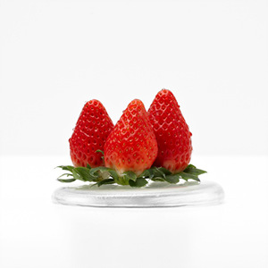 친환경 딸기(600g/팩)