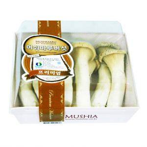 머쉬마루 버섯(150g)