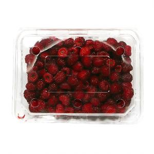 산딸기(500g)