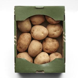 소포장감자(2kg/box)