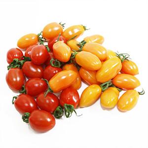 혼합 대추방울토마토(500g/팩)