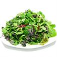 친환경 베이비채소(100g)