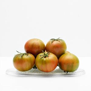 대저 토마토(1.2kg/팩)