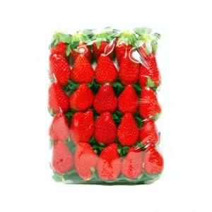 딸기(750g/팩)