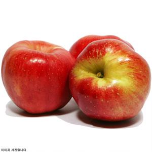 홍로(사과) 4입/봉