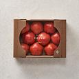 토마토(2kg/box)