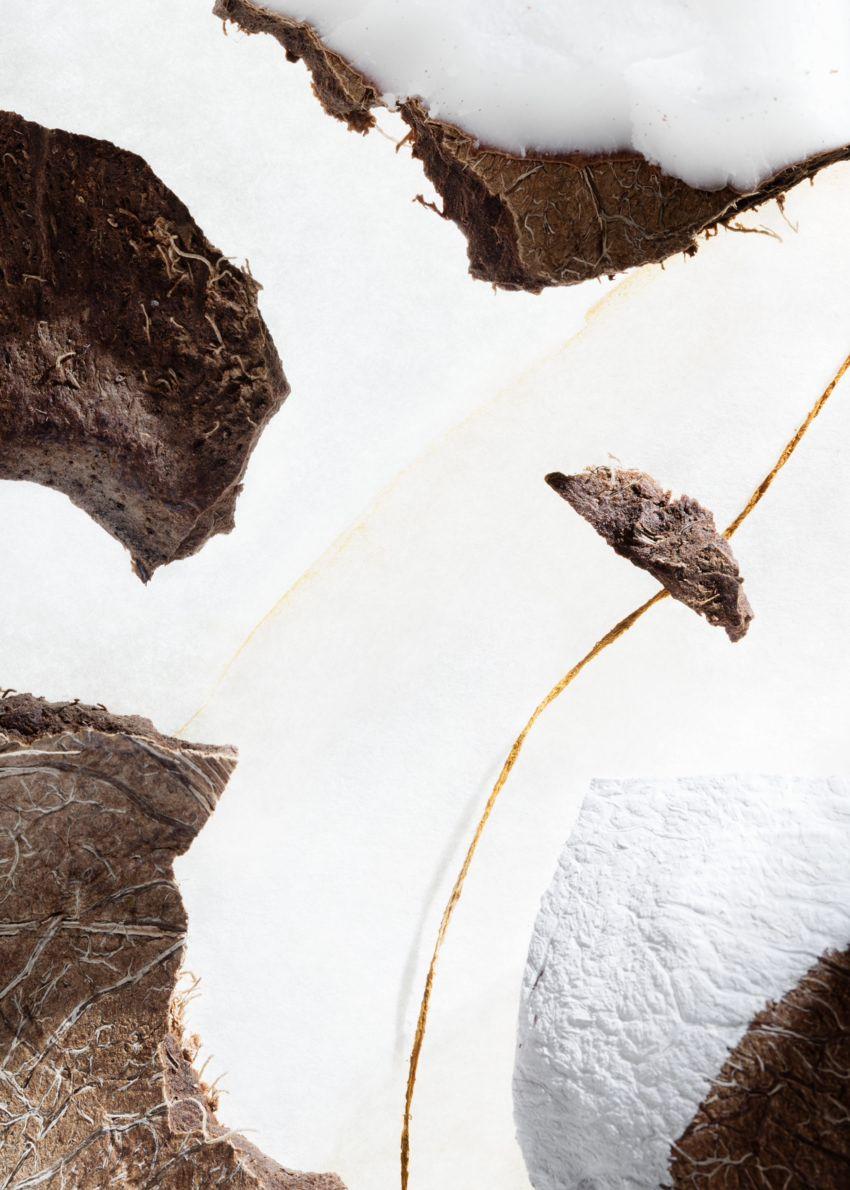 앤아더스토리즈 아방가르드 에어  바디 로션의 펄 드 코코컬러 Environmental입니다.