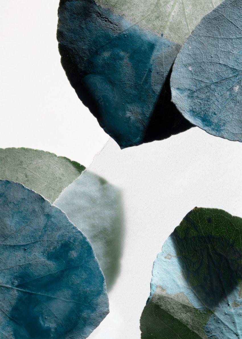 앤아더스토리즈 리비에라 포스트카드 핸드로션의 하바나 블루스컬러 Environmental입니다.