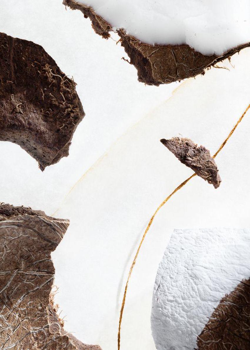 앤아더스토리즈 하바나 블루스 핸드로션의 펄 드 코코컬러 Environmental입니다.